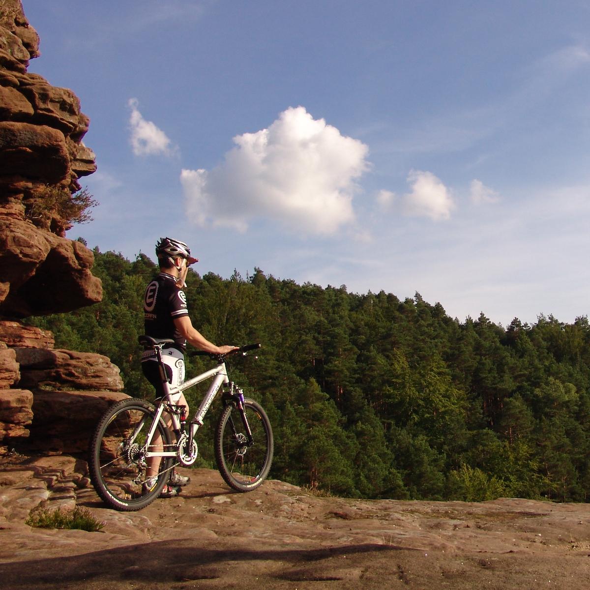 Mountainbike Aussicht Pfälzerwald